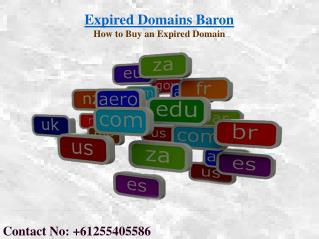 Where to Buy Domain Names | Expired Domains Baron