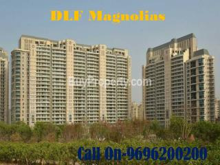 DLF Magnolias - Sector 42 - BuyProperty.com