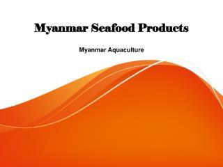 Myanmar Seafood