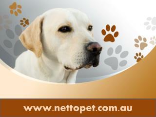 Pet foods online