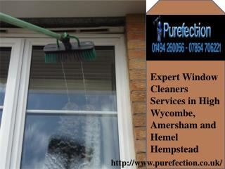 Expert window cleaner