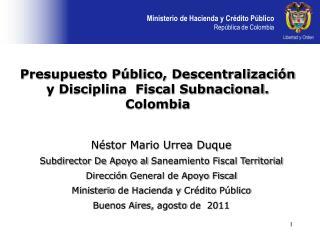 N stor Mario Urrea Duque Subdirector De Apoyo al Saneamiento Fiscal Territorial  Direcci n General de Apoyo Fiscal  Mini