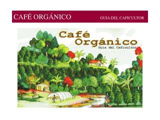 CAF  ORG NICO                             GUIA DEL CAFICULTOR