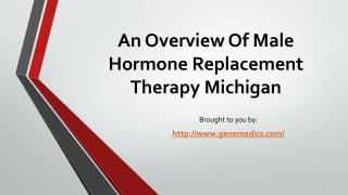 An Overview Of Male Hormone Replacement Therapy Michigan