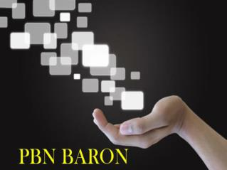 PBN Private Blog Network | PBN BARON | PBN Services