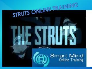 The Best Struts Online Training Program in India, USA, UK.