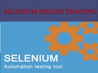 SELENIUM Online Training Courses in INDIA, USA, UK,