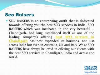 Best SEO Company Chandigarh - SEORAISERS