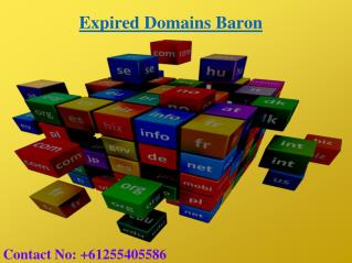 Buy an Expired Domain | Expired Domains Baron |  Expired Domains list
