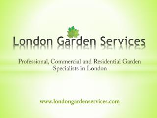 Professional Gardening Services in London