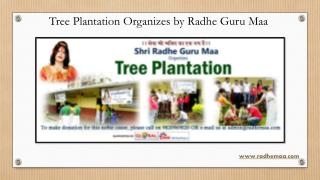 Tree Plantation Organizes by Radhe Guru Maa