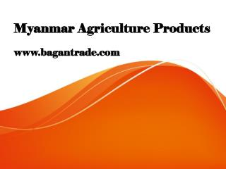 Myanmar Agriculture Products
