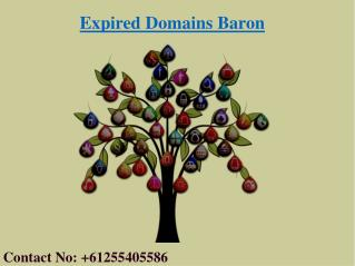Where to Buy Domain Names | Cheap Expired Domains | Expired Domains Baron