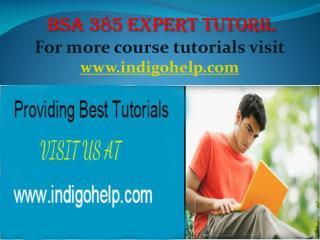 BSA 385 expert tutorial/ indigohelp