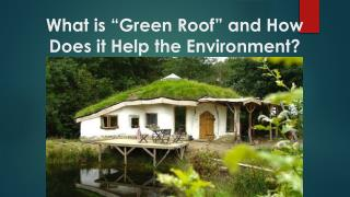 "What is ""Green Roof"" and How Does it Help the Environment?"