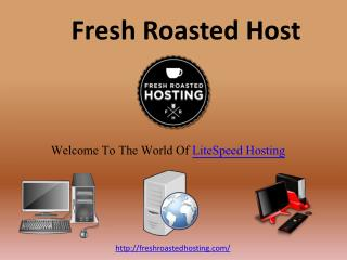 Business Hosting Provider