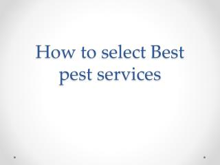 How to select Best office pest services