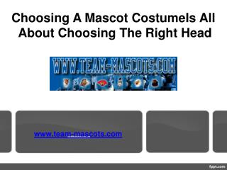 Choosing A Mascot Costume Is All About Choosing The Right Head