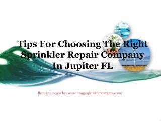 Tips For Choosing The Right Sprinkler Repair Company In Jupiter FL