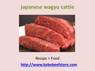 japanese kobe beef