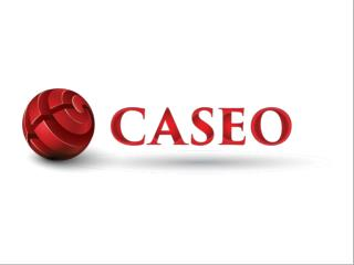 Caseo Online Digital Marketing - Canada SEO Services
