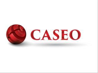Caseo Online Digital Marketing - Canada SEO Services