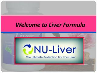 Effective Liver Health Support Ingredients