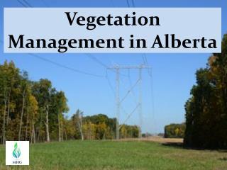 Vegetation Management in Alberta