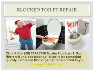 Blocked Toilet Repair