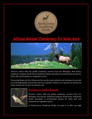 African Animal Taxidermy Tri State Area