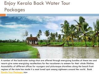 Enjoy kerala back water tour packages