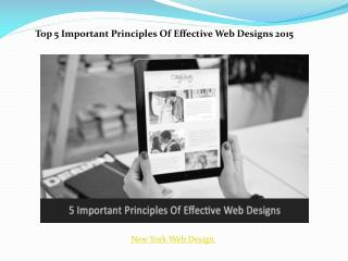 Principles of effective web designs