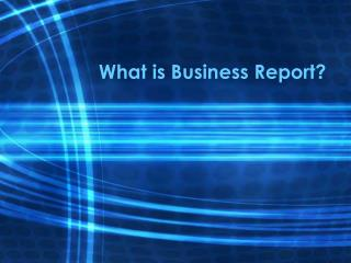 What is Business Report?