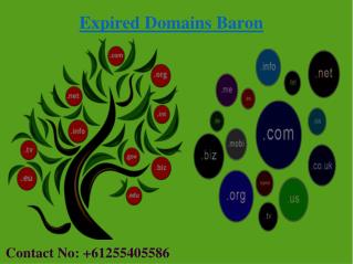 Top Reasons To Buy Expired Domain At EXPIRED DOMAINS BARON