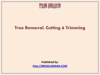 Tree Services-Tree Removal