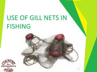 Use of Gill Nets in Fishing - Texastastes
