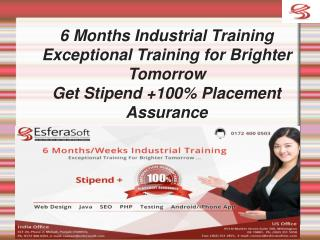 6 months industrial training with stipend