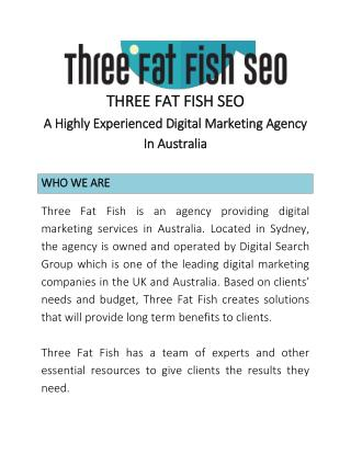 Work With Three Fat Fish SEO and Increase Your Brand's Online Visibility