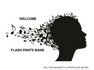 Highest Rated Wedding Flash Pants Band