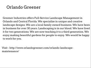Landscape Maintenance In Orlando
