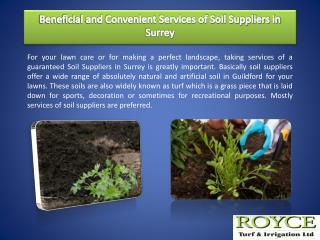Beneficial and Convenient Services of Soil Suppliers in Surrey