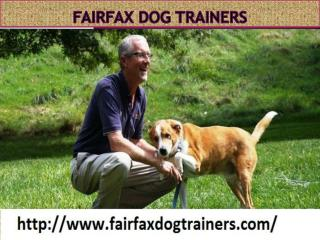 Fairfax Dog Trainers - fairfaxdogtrainers.com