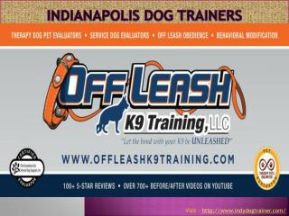 Indianapolis dog training