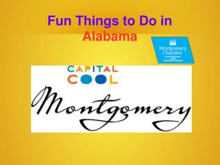 Fun Things to Do in Alabama for Family