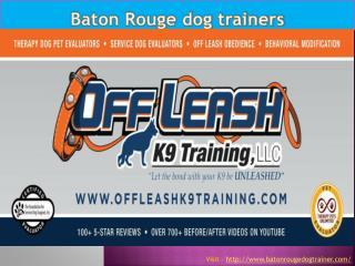 Baton Rouge dog training