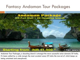 Fantasy Andaman Tour Packages
