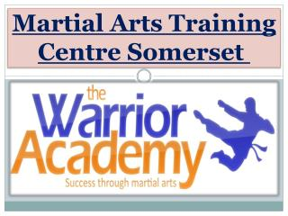 Martial Arts Training Centre Somerset