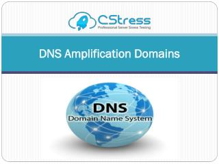 DNS Amplification Domains