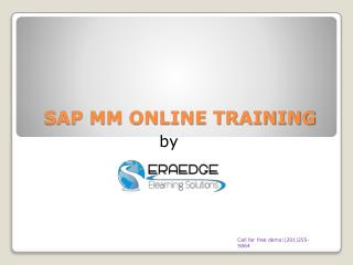 Why SAP MM?& its overview