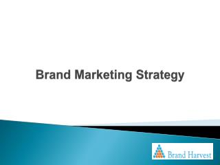 Brand Marketing Strategy
